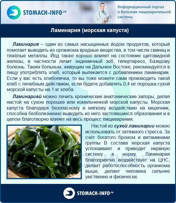 Ламинария (морская капуста)