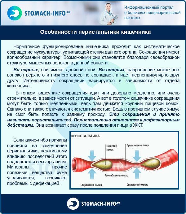 Особенности перистальтики кишечника