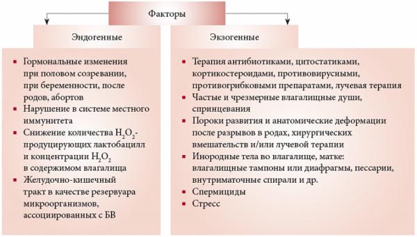 Роль эндогенных и экзогенных факторов в возникновении бактериального вагиноза