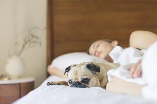 Человек должен отдыхать и высыпаться, чтобы повысить качество жизни