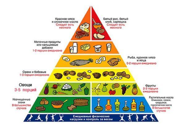 рациональная пирамида для здорового питания
