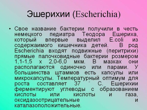 Эшерихии