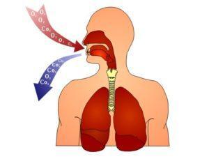 Недуг органов дыхания