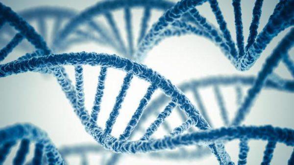 Генетическая предрасположенность - один из главных факторов, влияющих на появление заболевания