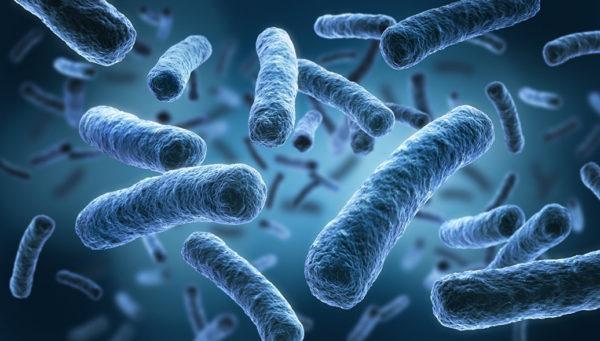 Кишечные инфекции - одна из причин дисбактериоза