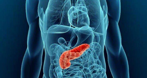 После операции удаления поджелудочной железы организм лишается пищеварительных ферментов и инсулина, что в принципе является большой угрозой здоровью и жизни. Но практика показывает, что полноценная жизнь без поджелудочной железы возможна, и современная медицина это позволяет