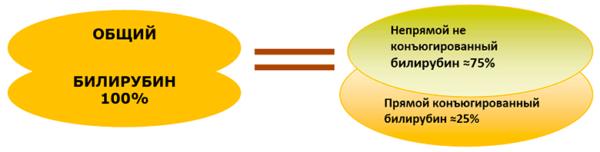 Общий билирубин крови показывает количество всего билирубина, который присутствует в крови: непрямого и прямого