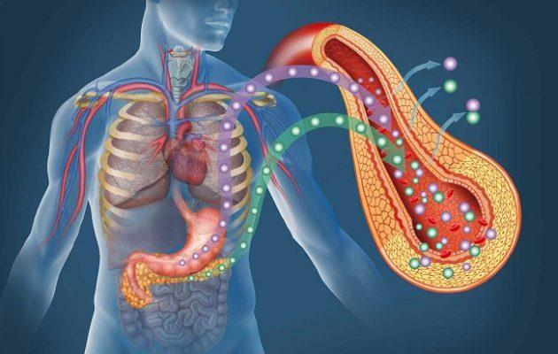 Как люди живут после удаления поджелудочной головки железы