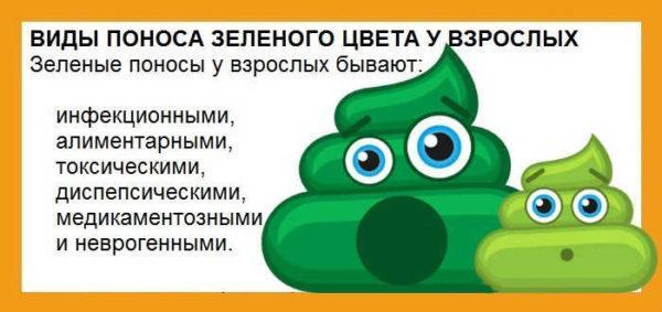Причины зеленого поноса