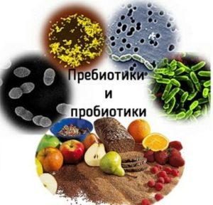 Пробиотики/пребиотики