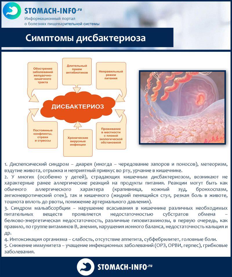 Лечение дисбактериоза кишечника у взрослых диета