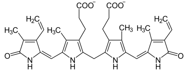 Структурная формула билирубина
