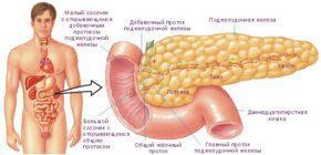 Увеличена поджелудочная железа: причины и лечение, диета