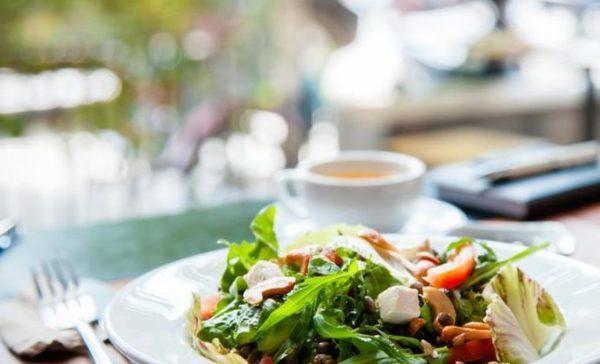 Желудок легче переваривает растительную пищу