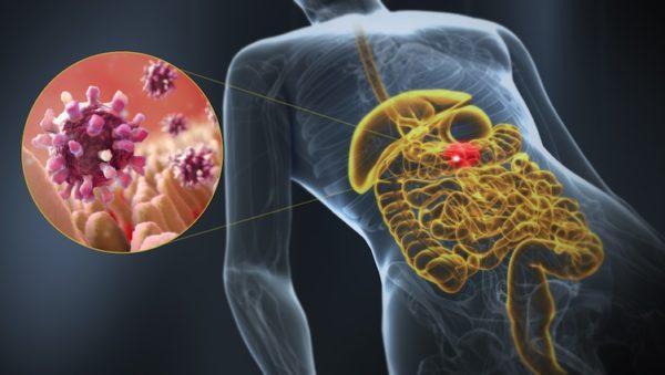 Бактериальные инфекции почти всегда воздействуют на кишечник, вызывая диарею
