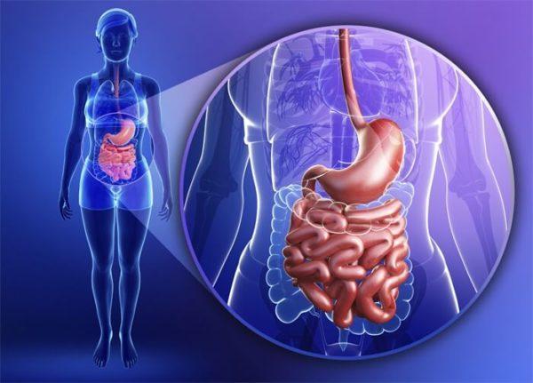 Болезни ЖКТ - одна из основных причин тошноты и боли в животе после еды