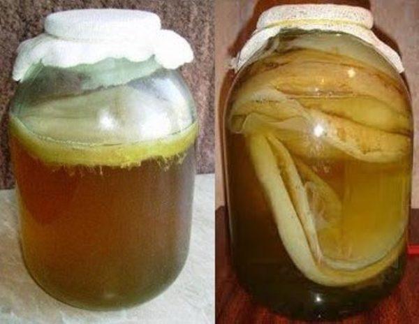 Чайный гриб оказывает благотворное воздействие на микрофлору кишечника, но принимать его необходимо правильно