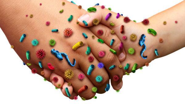 До полного выздоровления человек является носителем инфекции и может легко заразить окружающих