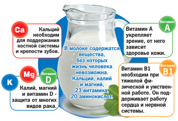 Какие витамины содержаться в молоке