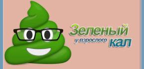 Кал зелёного цвета у взрослого