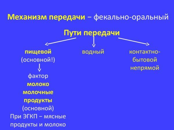 Механизм заражения