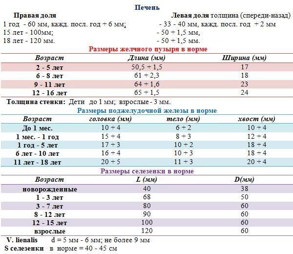 Нормы и отклонения органов брюшной полости