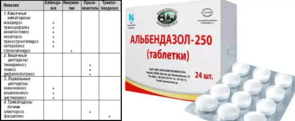 Применение противоглистных препаратов