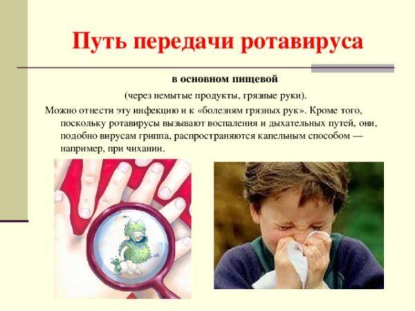 Путь передачи ротавируса