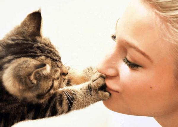 Риск гельминтоза повышает тесный контакт с животными