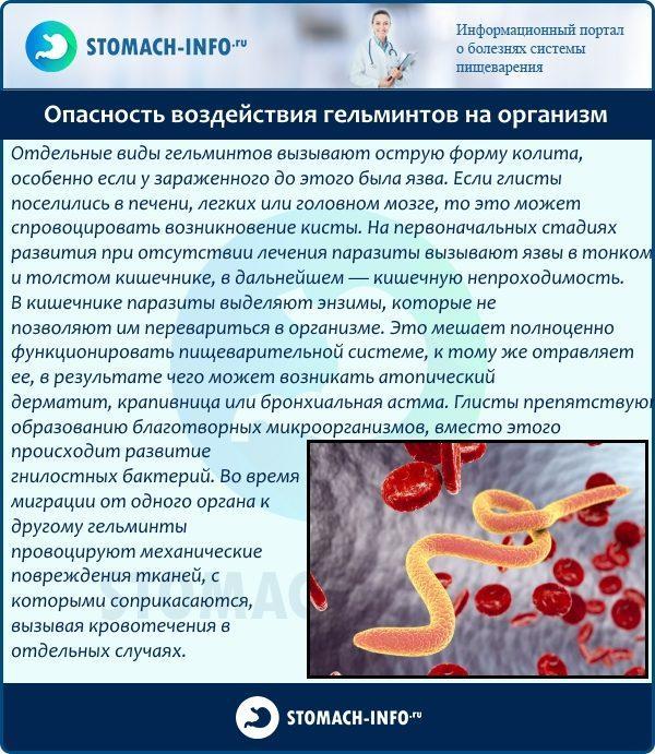 Опасность воздействия гельминтов на организм
