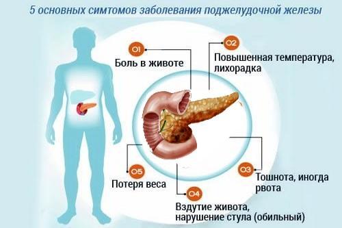 Симптомы организма о заболевании поджелудочной железы