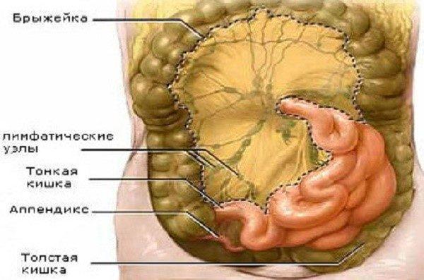 Состояние организма при абдоминальном туберкулезе