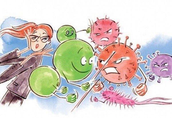 Внутри нашего организма происходит ежедневная борьба вредных бактерий с полезными