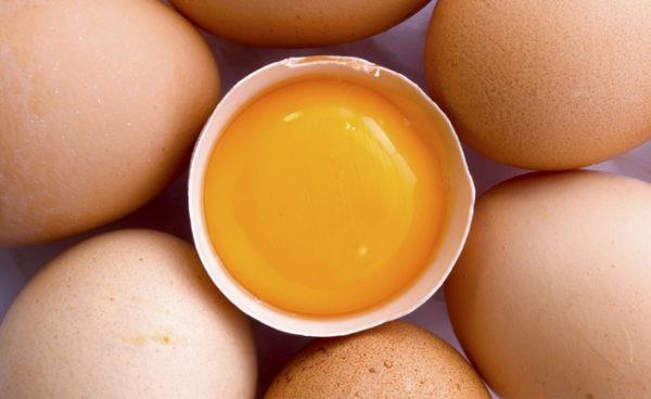 Основным источником заражения являются куриные яйца