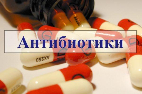 Длительный прием антибиотиков ведет к нарушению микрофлоры кишечника и диарее