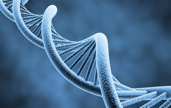 Генетическая предрасположенность к аллергии может передаваться через поколения