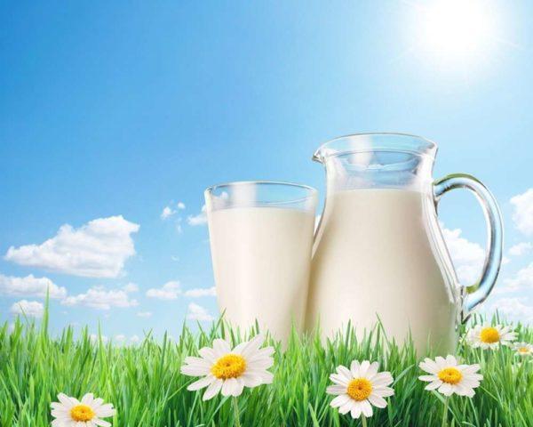 Молоко в чистом виде во время диеты лучше не давать малышу