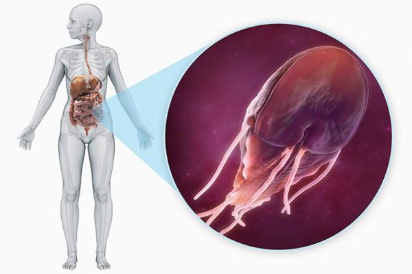 При лямблиозе, помимо горечи, может беспокоить сухой кашель