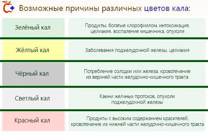 Причины различного цвета кала
