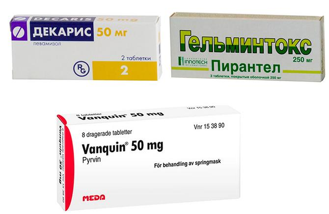 Лекарственные средства против круглых червей