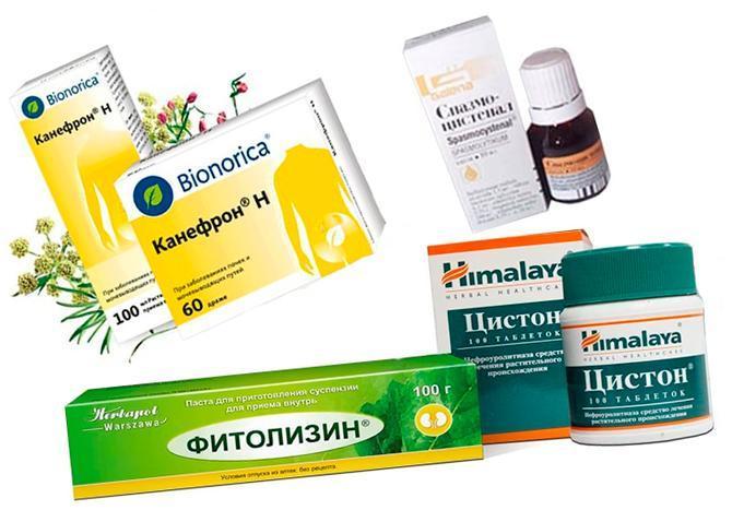 Препараты на растительной основе от цистита