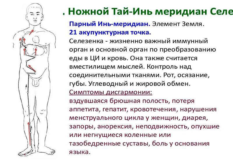 Ножной Тай-Инь мередиан Селе