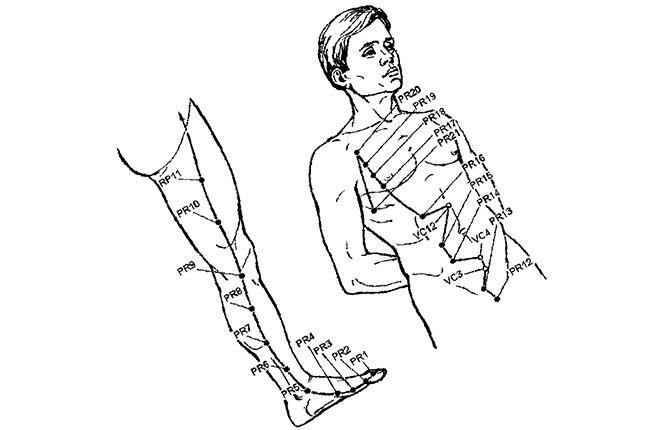 Расположение акупрессурных точек меридиана селезенки